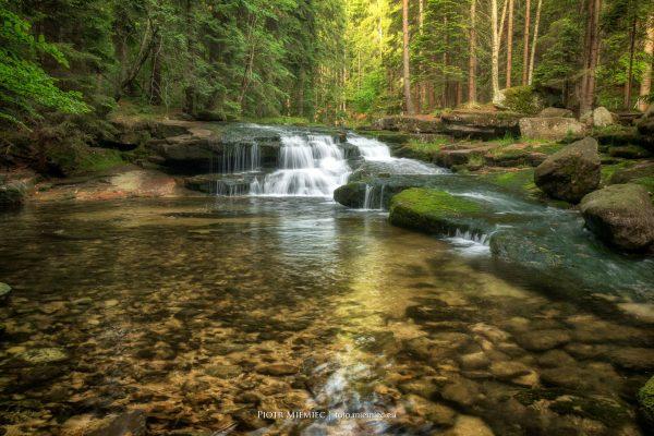 Górski potok w Karkonoszach