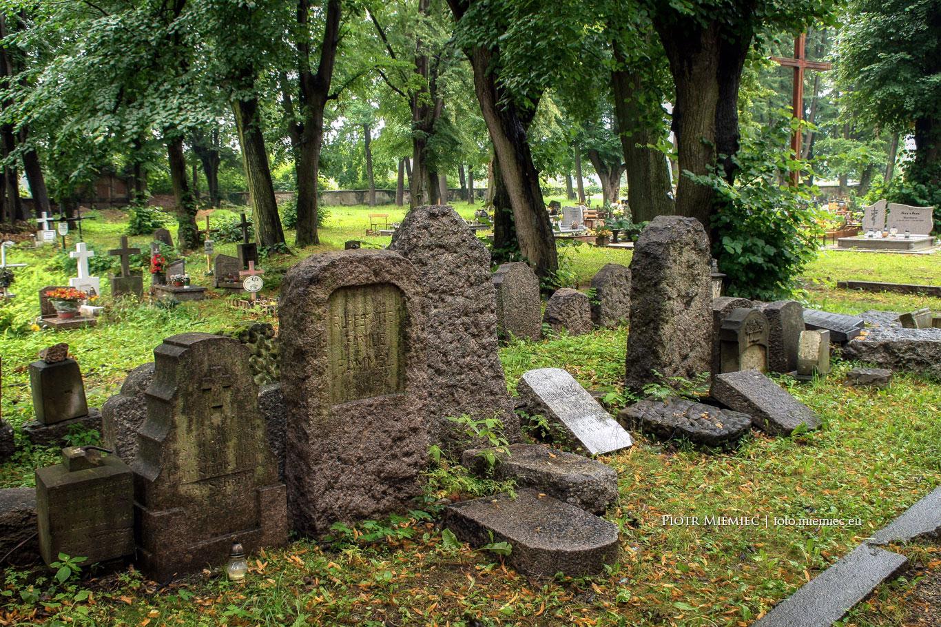 Miłków ruiny kościoła