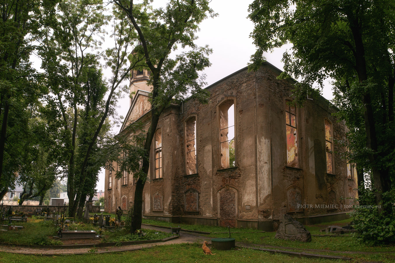 Miłków – ruiny kościoła