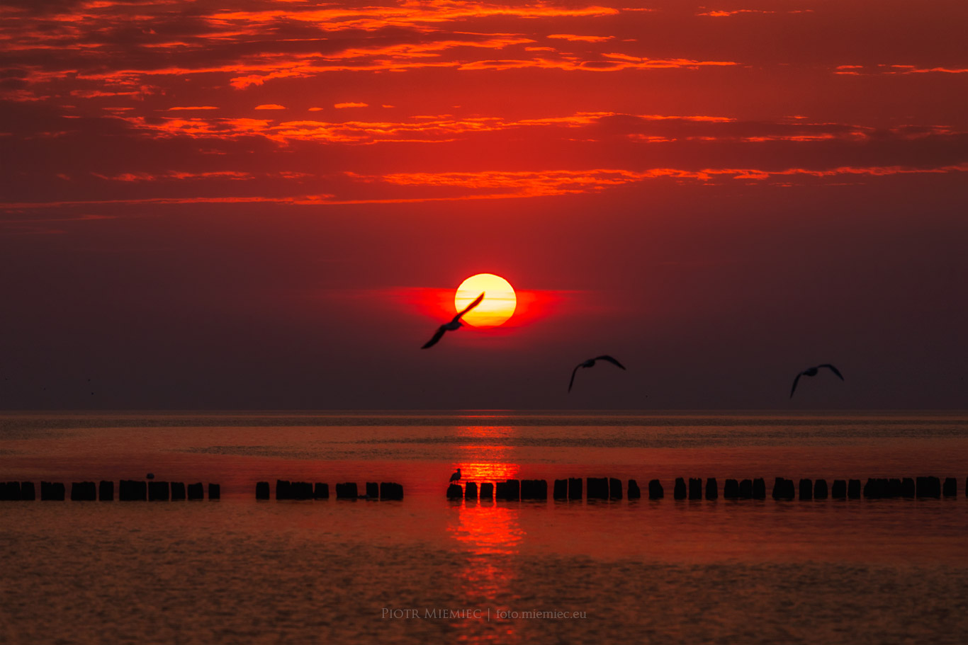 Na brzegu morza – Rewal (2)