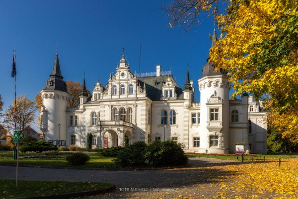 Pałac w Jelczu-Laskowicach