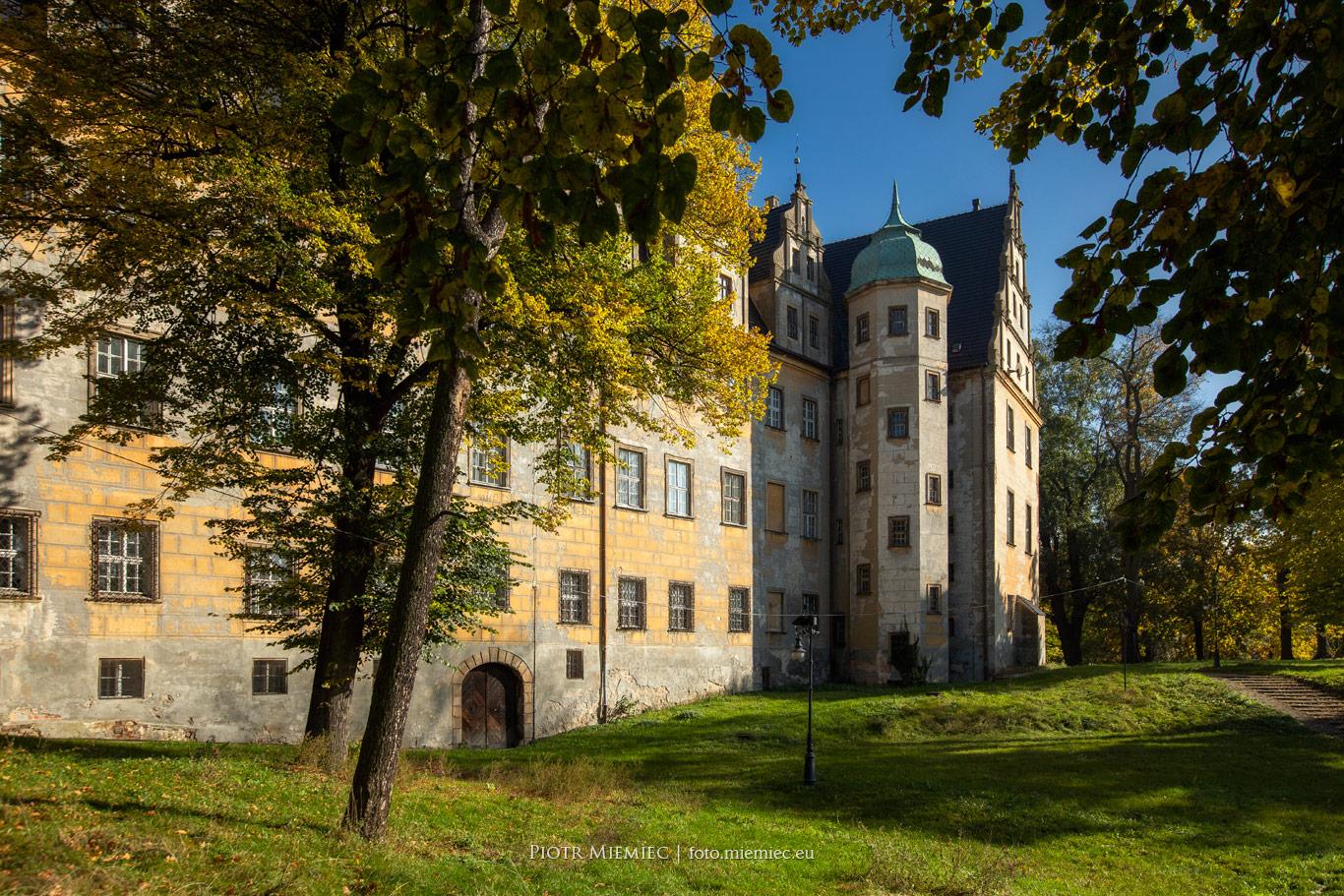 fot. 796 Zamek Książęcy w Oleśnicy