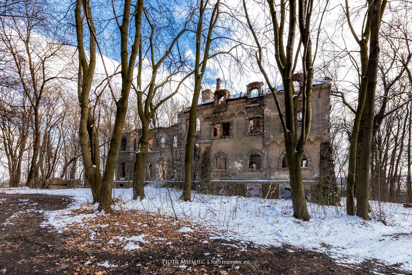 Ruiny pałacu Moesów w Wierbce