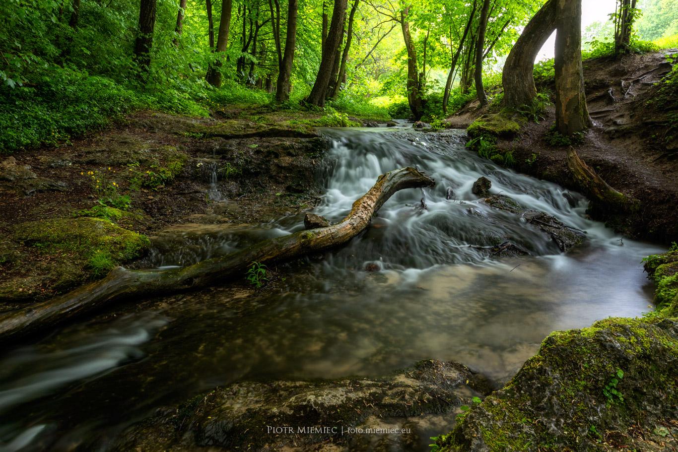 Potok Będkówka
